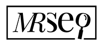 mrseo-logo-medium